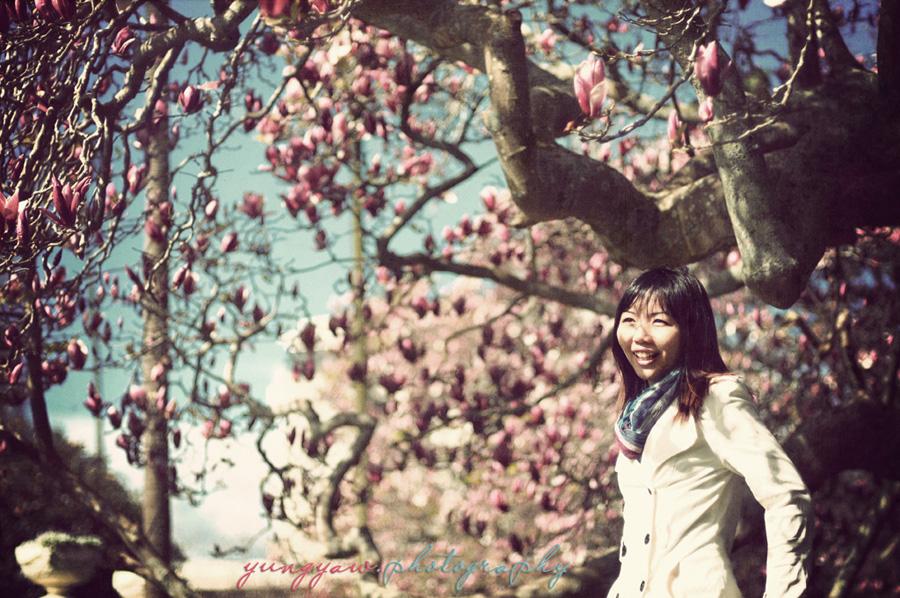 Spring_AKL_03