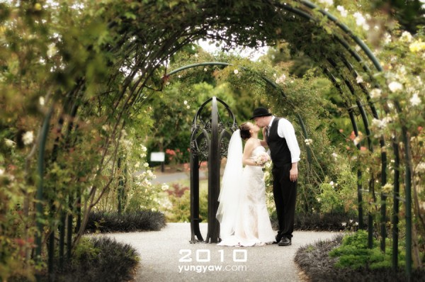 2010_01_Daphne_Steven_Wedding