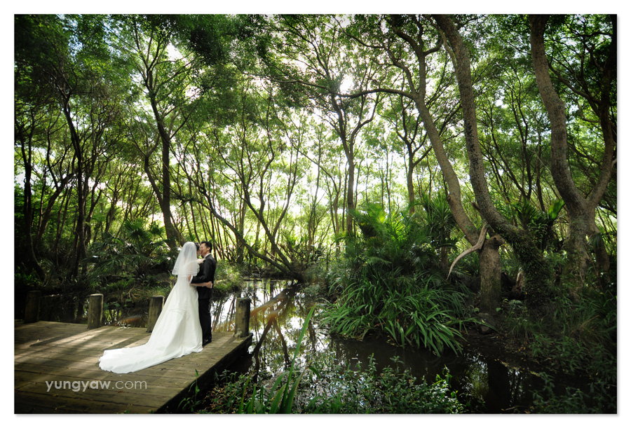 MeiChin + Joshua Wedding (Auckland)