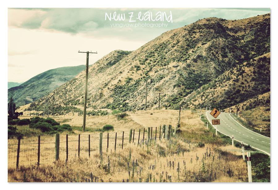 NewZealand_06