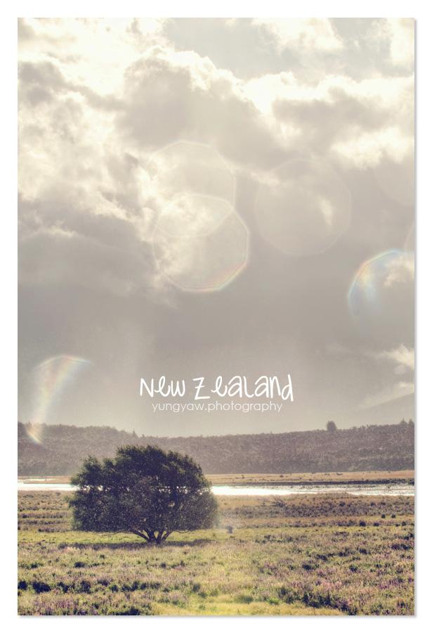 NewZealand_24